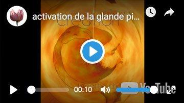 activation glande pineale harmonisation chakras